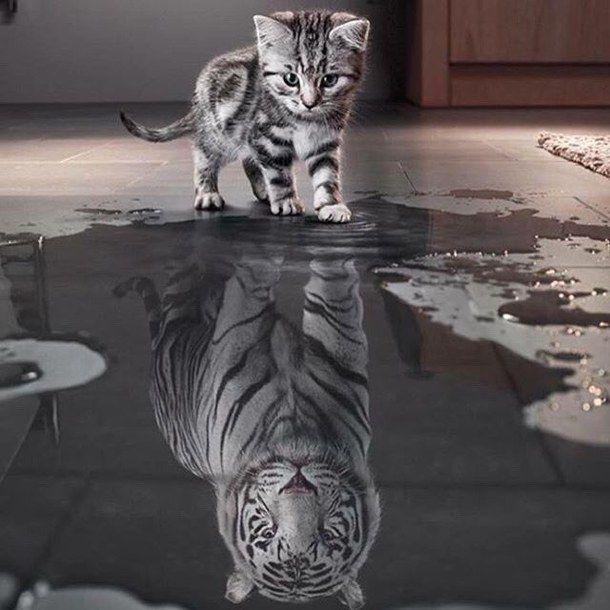 Different self image
